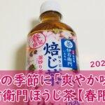 伊右衛門ほうじ茶【2021春限定】で後味すっきり。桜パッケージも良いです。