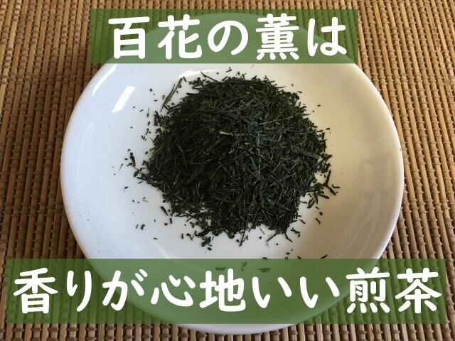 お茶の種類は煎茶