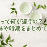 新茶の違いや時期を詳しく解説。なぜ新茶は美味しいのか?