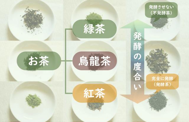 """お茶の中でも緑茶は""""発酵させないお茶"""""""