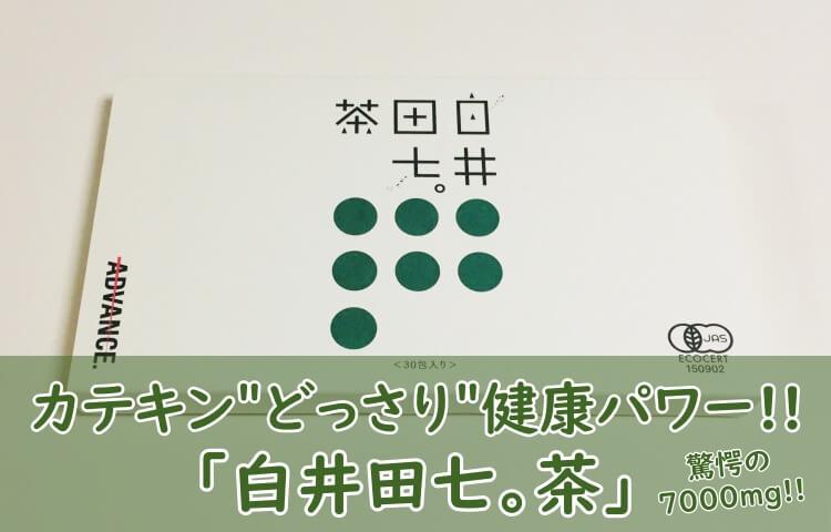 白井田七茶でカテキンどっさり!期待効果や口コミを1年間飲んでレビュー