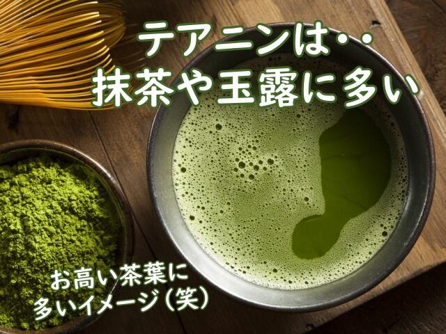 緑茶のテアニン含有量をまとめて紹介
