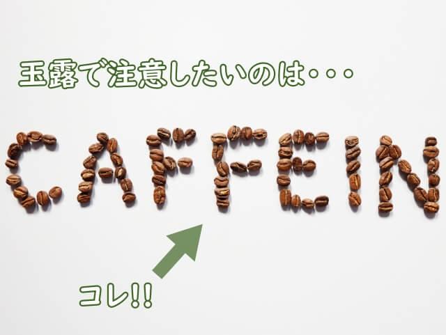 カフェインが多いので注意。カテキンは少ない。