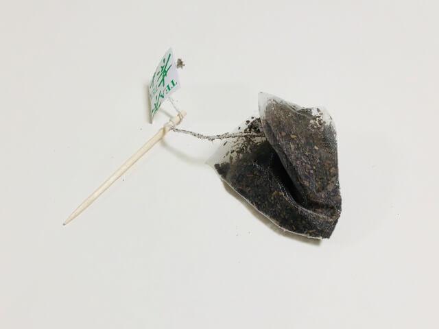 爪楊枝にティーバッグセット