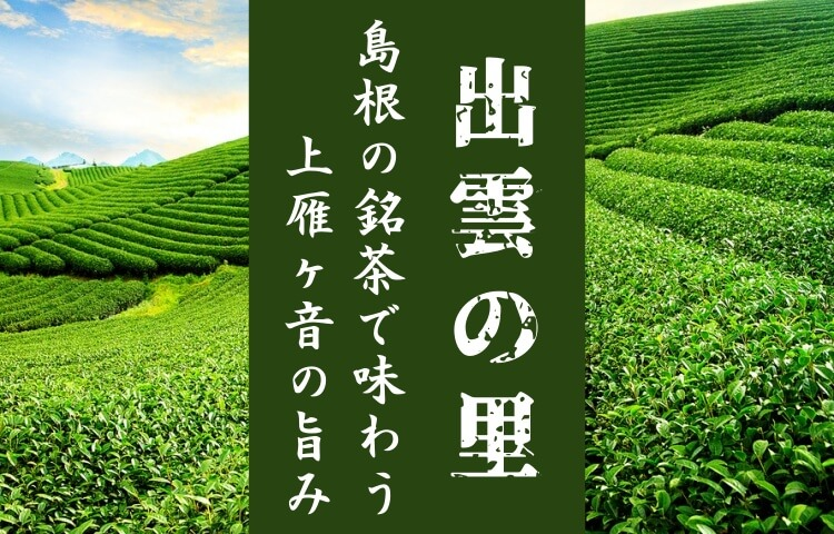 【お茶の香里園】上雁ヶ音「出雲の里」を飲んでみた!島根の甘い味を味わう!